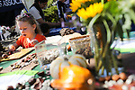 Harper Daughtry, 4, of Mountain View,uses leaves and seeds to make impressions in clay at a kids' craft booth during the Los Altos Fall Festival Oct. 5.