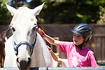 A riding student brushes a horse after her riding lesson.