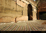 Baths of Caracalla Floor Mosaics East Palaestra (Greek Wrestling Room) Aventine Hill Rome