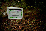 A sign urging vistitors to be quiet in Muir Woods National Monument, January 26, 2011.