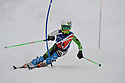 4/01/2014 BSA slalom boys race 1