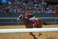 HOT SPRINGS, AR - APRIL 15: Whitmore #8, with Ricardo Santanta, Jr. aboard before crossing the finish line in the Count Fleet Sprint Handicap at Oaklawn Park on April 15, 2017 in Hot Springs, Arkansas. (Photo by Justin Manning/Eclipse Sportswire/Getty Images)