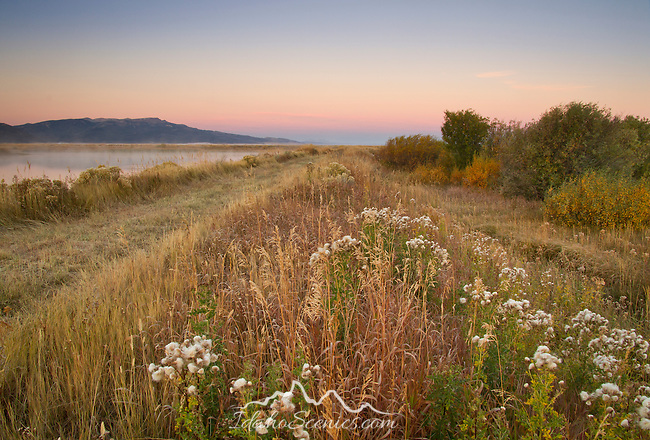 Montana, Southwest, Centennial Valley. Red Rock Lake wildlife refuge at dawn in autumn.