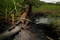 Oil flares and pipelines cover thousands of miles of the Ecuadorian amazon.