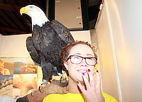 25/1/13 No Fee Photo -Aoife Jennings a volunteer at the Holiday World Show 2013 at the RDS meets Alaska the Bald-Headed Eagle. Collins Photos
