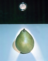 TRANSPARENCY, TRANSLUCENCY &amp; OPACITY (3 of 3)<br />