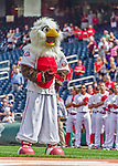 20 September 2015: Washington Nationals Mascot Screech stands in front of the dugout during the playing of the National Anthem prior to a game against the Miami Marlins at Nationals Park in Washington, DC. The Nationals defeated the Marlins 13-3 to take the final game of their 4-game series. Mandatory Credit: Ed Wolfstein Photo *** RAW (NEF) Image File Available ***