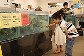 June 2, 2010. Cary, North Carolina..Hanson and Hollen Bui take time to look at the fish during their trip to the Grand Asia Market.