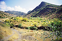 Irak 2000.la vallée de Sharanesh.   Iraq 2000. Valley of Sharanesh