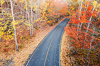 Park road running through autumn foliage, Mount Desert Island, Acadia National Park, near Bar Harbor, Maine, USA