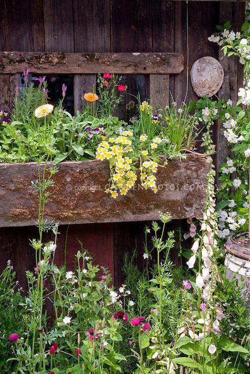 Windowbox garden plant flower stock photography - Rustic flower gardens ...