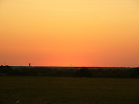 Sunset North Texas Prairie