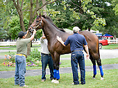 Afleet Express paddock schools for paddock with Jimmy Jerken.
