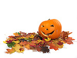 Carved smiling pumpkin on colorful fall leaves. Jack-o'-lantern Halloween symbol. Isolated on white background.