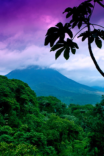The Active Arenal Volcano And The Dense Rainforest Canopy In La Fortuna, Costa Rica.