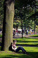 Student reclining against tree reading in Harvard Yard, Harvard University, Cambridge, MA
