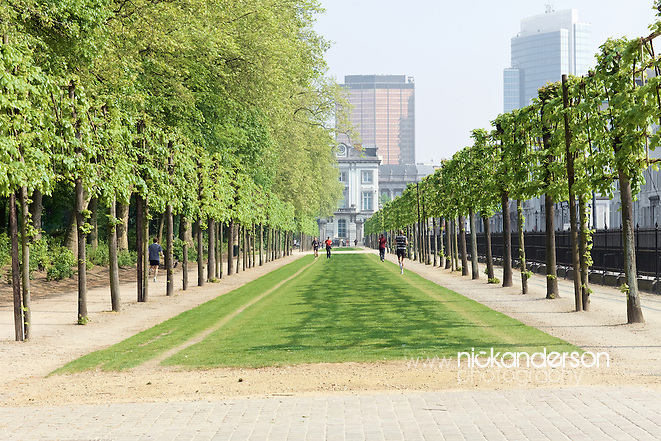 Joggers making full use of a tree-lined avenue in the Parc de Bruxelles / Warandepark, Brussels (Nick Anderson)
