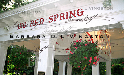 The Big Red Spring, in Saratoga Race Course.