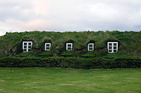 Old farmhouse with grass roof and white windows