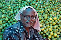 Whole Sale Fruit Market, Kolkata, West bengal, India