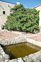 A bathing washing pit once used by Dominican novices with a soapberry tree in the background. Etno-Botanical Gardens. Oaxaca, Oaxaca, Mexico