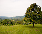 The view from the deck of Chateau O'Brien Winery and Vineyard features trees, vineyards, and the surrounding foothills of the Blue Ridge.