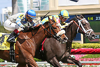 HALLANDALE BEACH, FL - MARCH 04:  Dream Dancing #1 (inside horse) wth jockey Julien Leparoux on board, defeats #4 Coasted and wins the Herecomesthebride (Grade III) Stakes at Gulfstream Park on March 04, 2017 in Hallandale Beach, Florida. (Photo by Liz Lamont/Eclipse Sportswire/Getty Images)
