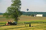Farmscape Summer