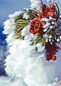 Winter Scene - Pinecone