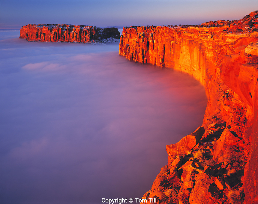 """Fog """"Sea"""" in the Canyonlands at Sunrise, Grandview Point, Island in the Sky, Canyonlands National Park, Utah"""