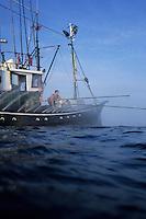 """Europe/France/Aquitaine/64/Pyrénées-Atlantiques/Pays Basque/Saint-Jean-de-Luz:  le Thonier Canneur ou Thonier Bolincheur """"Aïrosa""""  à la pêche au thon à la  canne,les rampes à eau  sont mises en action pour camoufler le bateau.La pêche se  pratique au vif avec comme appât vivant (peïta) de la sardine"""