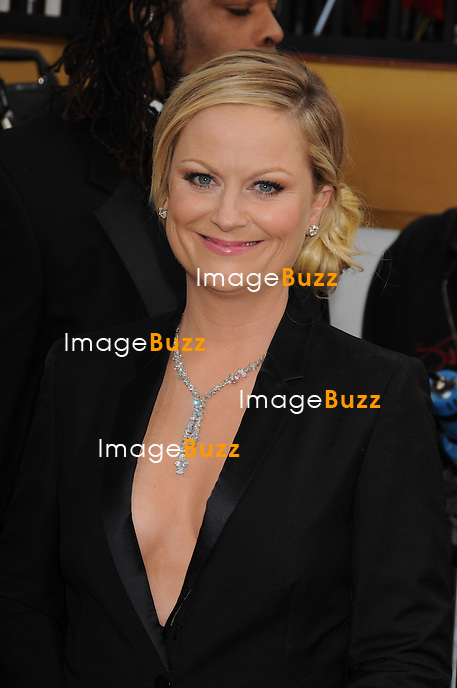 1/13/13.Amy Poehler at the 70th Annual Golden Globe Awards..(Beverly Hills, CA)
