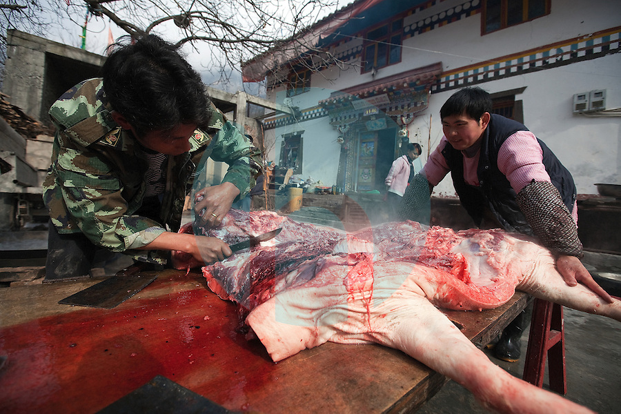 January 10th 2012_Jiuzhaigou, China_ Two men butcher a pig in a small ethnic Tibetan village in Abba Prefecture's Jiuzhai Valley National Park, which is home to nine Tibetan villages, over 220 bird species as well as a number of endangered plant and animal species, including the giant panda, Sichuan golden monkey, the Sichuan takin and numerous orchids and rhododendrons.Photographer: Daniel J. Groshong/The Hummingfish Foundation