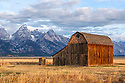 WY01830-00...WYOMING - Teton range and barn at the Thomas Murphy Homestead in Grand Teton National Park.