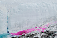 A harmless red dye used to trace the water flow on the Greenland ice cap in summer.