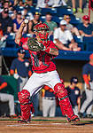 10 March 2014: Washington Nationals catcher Jose Lobaton in action during a Spring Training game against the Houston Astros at Space Coast Stadium in Viera, Florida. The Astros defeated the Nationals 7-4 in Grapefruit League play. Mandatory Credit: Ed Wolfstein Photo *** RAW (NEF) Image File Available ***