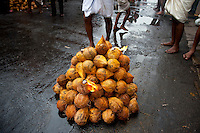Coconuts coloured with turmeric and topped with burning camphor will be smashed on the ground. Hindu  Festival at small Hindu temple off Jampettah Street.