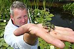 Foto: VidiPhoto<br /> <br /> DEVENTER &ndash; Vijverdokter Erik Brederode (36) van Vijvercentrum Apeldoorn inspecteert woensdag de kwaliteit van het water en de gezondheid van bodem, planten, wortels en dierenleven in een vijver bij Deventer. Brederode: &ldquo;Vijvers zijn helemaal terug van weggeweest. Mensen komen er steeds meer achter dat een vijver heel goed is voor de flora en fauna om het huis. Natuurvijvers in de bebouwde omgeving spelen bovendien een steeds belangrijker rol bij de piekafvoer van regenwater.&rdquo; Tijdens de huidige droogteperiode heeft Brederode het razend druk. Door de lage waterstand in veel tuinvijvers maken mensen zich zorgen over de gezondheid van kikkers, salamanders, waterplanten en het insectenleven. Donderdagavond zijn rondom Deventer een tiental vijvertuinen van particulieren gratis te bezoeken. Zaterdag en zondag organiseert Groei&amp;Bloei, de grootste tuinvereniging van ons land, het Nationale Open Tuinenweekend, waarbij meer dan 1000 particulieren siertuinen worden opengesteld voor het publiek. Er worden zo&rsquo;n 100.000 bezoekers verwacht.