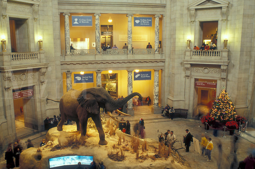 Columbia Natural History Museum