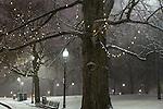 Evening snowfall in Boston Common, Boston, Massachusetts, USA