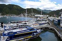 Picton, leisure and small craft harbour, South Island, New Zealand. 201004135371..Copyright Image from Victor Patterson, 54 Dorchester Park, Belfast, United Kingdom, UK. Tel: +44 28 90661296. Email: victorpatterson@me.com; Back-up: victorpatterson@gmail.com..For my Terms and Conditions of Use go to www.victorpatterson.com and click on the appropriate tab.