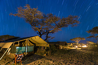 Star trails over tented camp in the Serengeti National Park, Tanzania, East Africa