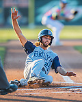 29 July 2016: Brooklyn Cyclones outfielder Gene Cone slides home to score against the Vermont Lake Monsters at Centennial Field in Burlington, Vermont. The Lake Monsters fell to the Cyclones 8-5 in NY Penn League action. Mandatory Credit: Ed Wolfstein Photo *** RAW (NEF) Image File Available ***