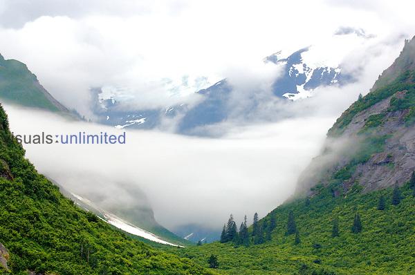 A glacier carved valley near Tracy Arm, Alaska.