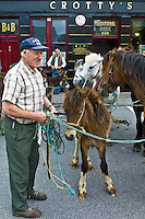Horse fair in market square in Kilrush, Co. Clare, Ireland. Traditional for locals and travellers to trade horses and ponies