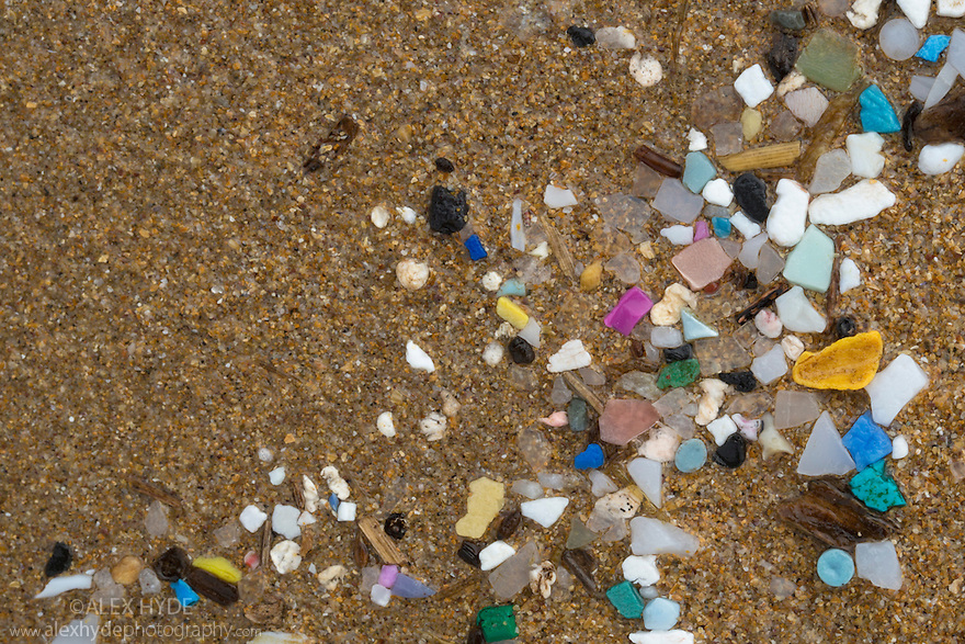 Marine microplastics (particles with upper size limit of 5mm) washed up on a beach in  Pembrokeshire, Wales, UK. January.
