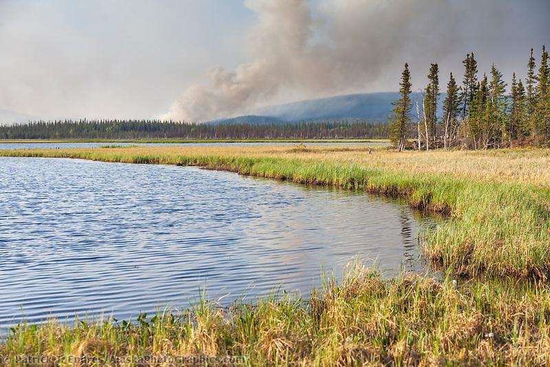 Eagle Trail forest fire near Tok, Alaska, May, 2010.
