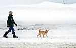 A man walks his dog down a street in Hirafu, Hokkaido in northern Japan on Feb. 7 2010. Niseko enjoys some 15 meters of snowfall per annum.
