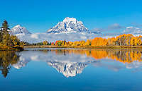 Grand Teton National Park, WY:  Mount Moran wrapped in low clouds reflecting with fall colored aspens on the Oxbow of the Snake River