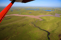"""The abundance of sediment transported by the rios makes the delta advance into the estuary of La Plata, giving it the name of the """"living delta"""". According to experts, it should reach Buenos Aires around 2500."""
